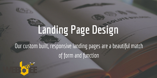 Running a Landing Page